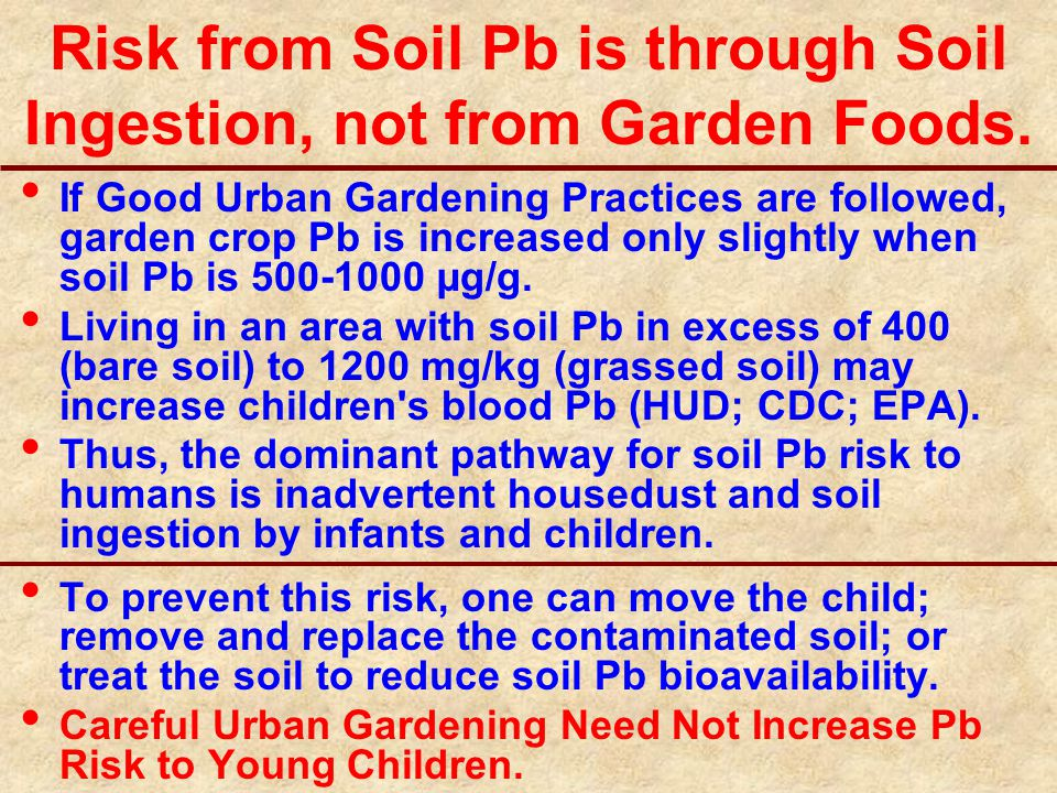 Risk from Soil Pb is through Soil Ingestion, not from Garden Foods.