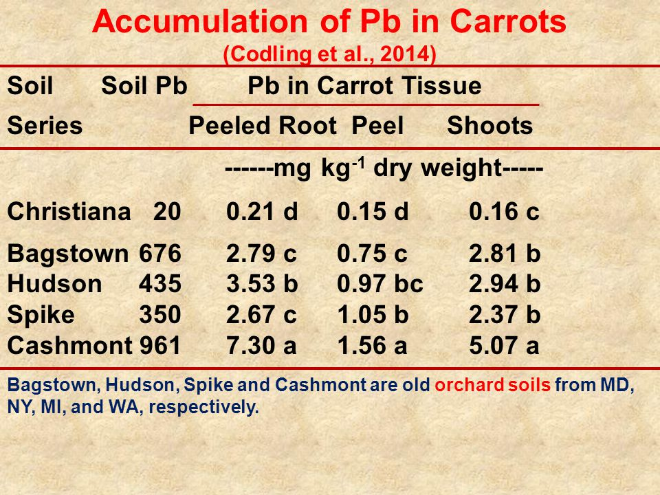 Accumulation of Pb in Carrots (Codling et al., 2014) Soil Soil Pb Pb in Carrot Tissue Series Peeled Root Peel Shoots ------mg kg -1 dry weight----- Christiana 20 0.21 d0.15 d0.16 c Bagstown676 2.79 c0.75 c2.81 b Hudson435 3.53 b0.97 bc2.94 b Spike350 2.67 c1.05 b2.37 b Cashmont 961 7.30 a1.56 a5.07 a Bagstown, Hudson, Spike and Cashmont are old orchard soils from MD, NY, MI, and WA, respectively.