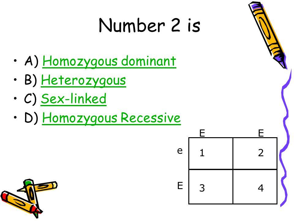 Number 2 is A) Homozygous dominantHomozygous dominant B) HeterozygousHeterozygous C) Sex-linkedSex-linked D) Homozygous RecessiveHomozygous Recessive 12341234 E eEeE