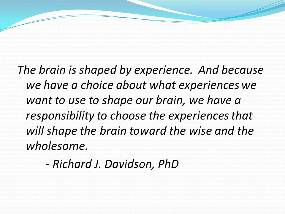 The brain is shaped by experience.