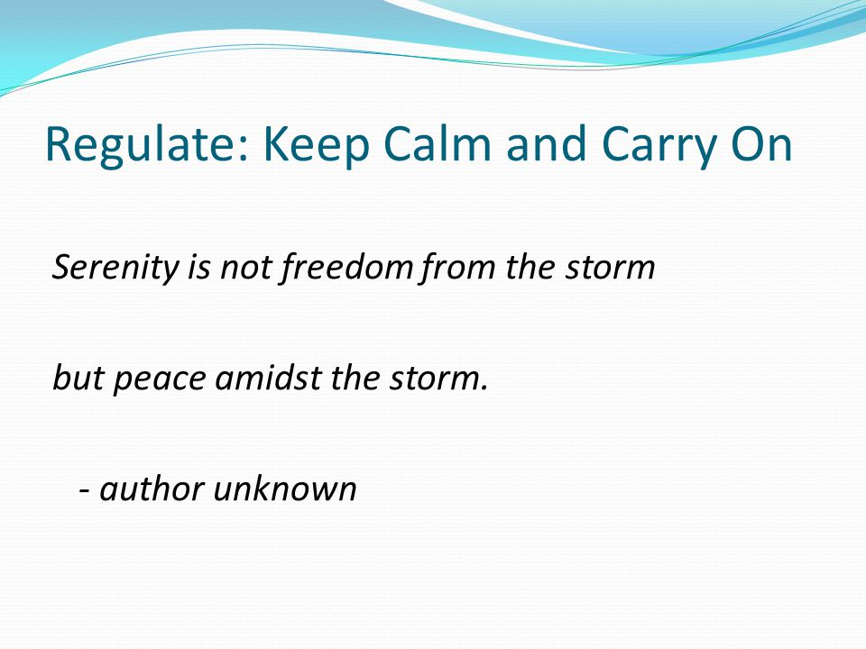 Regulate: Keep Calm and Carry On Serenity is not freedom from the storm but peace amidst the storm.