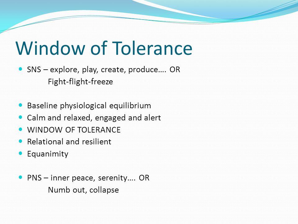 Window of Tolerance SNS – explore, play, create, produce….