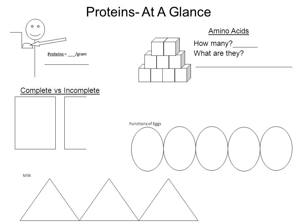 Proteins- At A Glance Proteins = ___/gram Functions of Eggs Milk Complete vs Incomplete Amino Acids How many? What are they?
