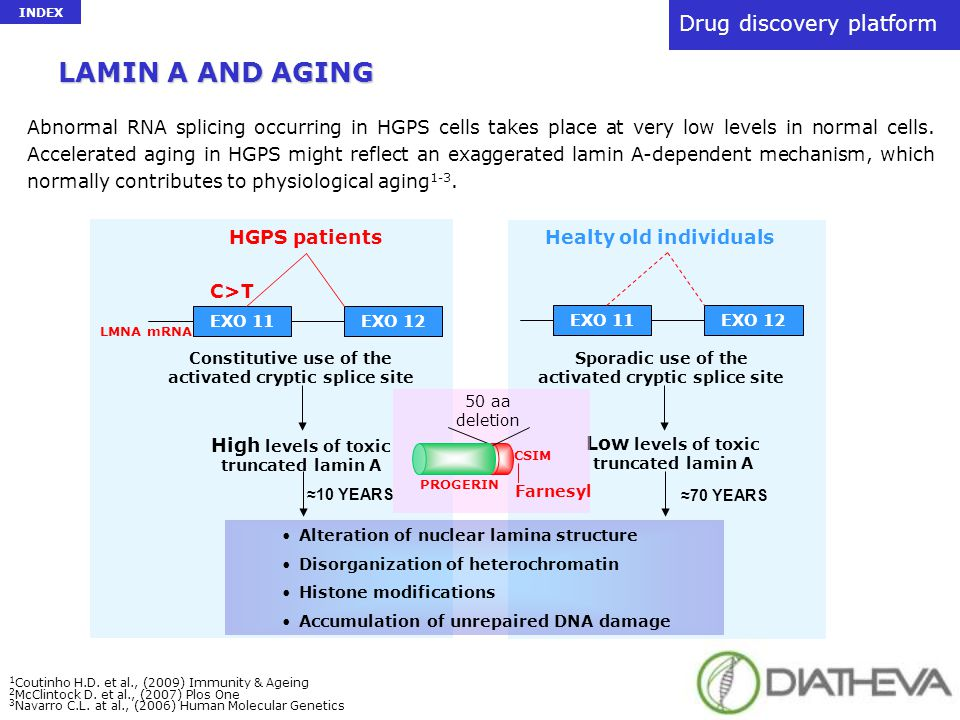 drug discovery A new platform in drug discovery for: -Laminopathies and Progeroid SyndromesLaminopathies and Progeroid Syndromes -AgingAging -Anti-retroviral therapyAnti-retroviral therapy drug discovery A new platform in drug discovery for: -Laminopathies and Progeroid SyndromesLaminopathies and Progeroid Syndromes -AgingAging -Anti-retroviral therapyAnti-retroviral therapy The platform includes: -Polyclonal antibodiesPolyclonal antibodies -Recombinant proteinsRecombinant proteins -PCR kits for direct sequencing of the involved genesPCR kits for direct sequencing of the involved genes -Prelamin A processing Cell-Free System ImmunoassayPrelamin A processing Cell-Free System Immunoassay Drug discovery platform INDEX