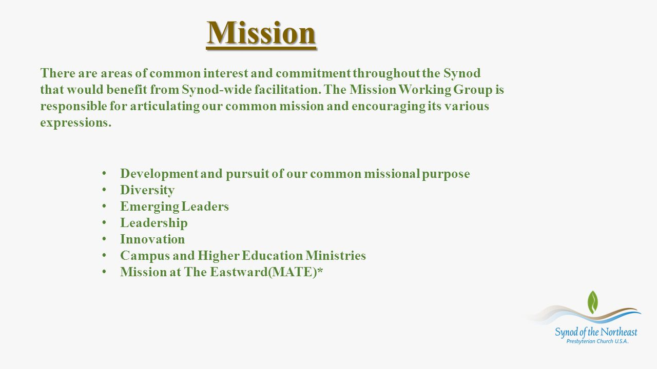 Mission There are areas of common interest and commitment throughout the Synod that would benefit from Synod-wide facilitation. The Mission Working Gr