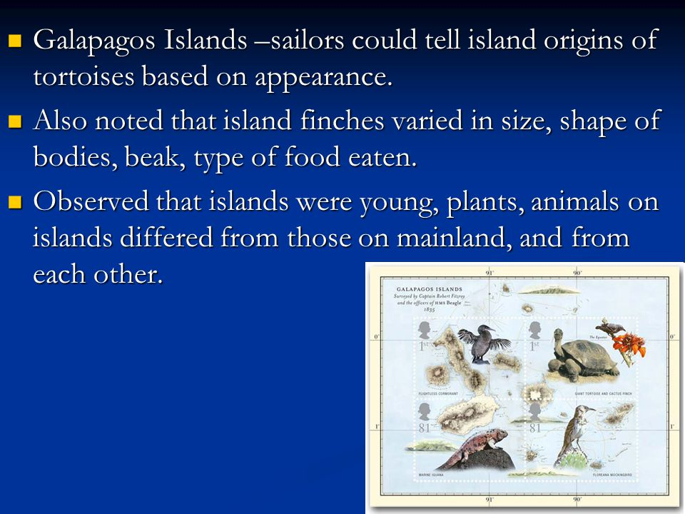 Galapagos Islands –sailors could tell island origins of tortoises based on appearance. Galapagos Islands –sailors could tell island origins of tortois