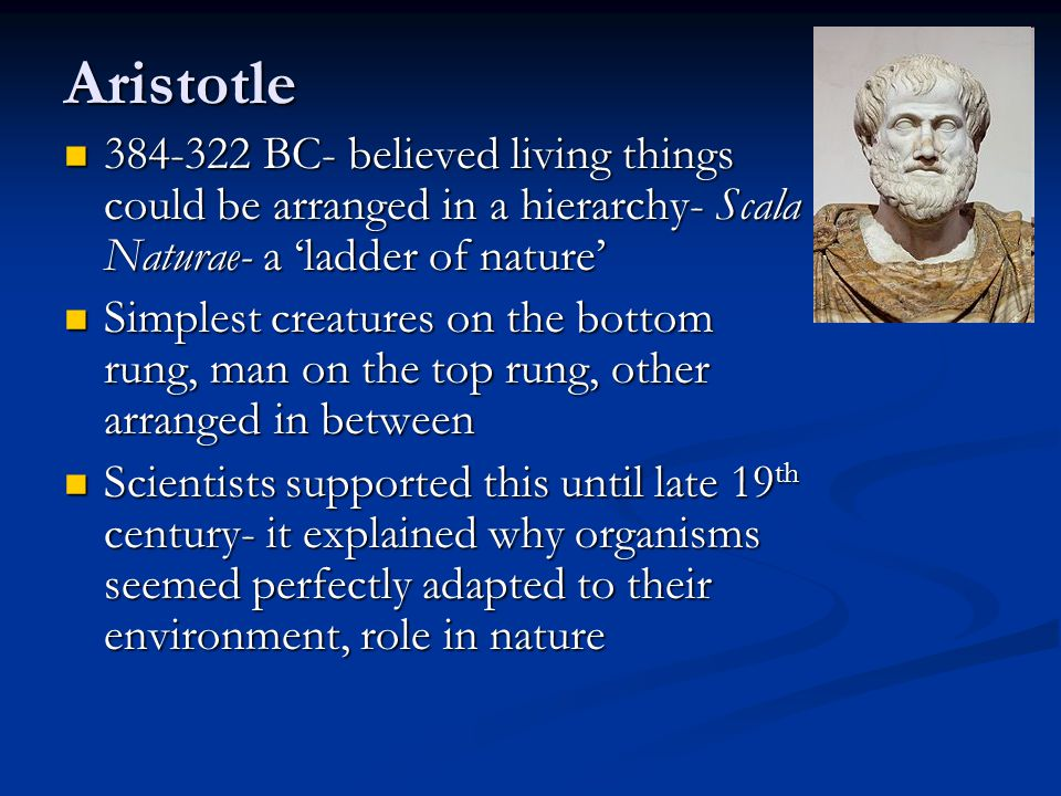 The idea of evolution isn't new- The idea of evolution isn't new- School of Greek Philosophy, founded by Anaximander (611-547 BC) proposed an atomic theory and an evolutionary theory similar to modern views School of Greek Philosophy, founded by Anaximander (611-547 BC) proposed an atomic theory and an evolutionary theory similar to modern views However, this work was unknown in Europe during formation of the science of Biology However, this work was unknown in Europe during formation of the science of Biology