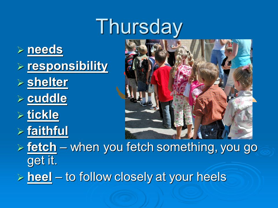 Thursday  needs  responsibility  shelter  cuddle  tickle  faithful  fetch – when you fetch something, you go get it.