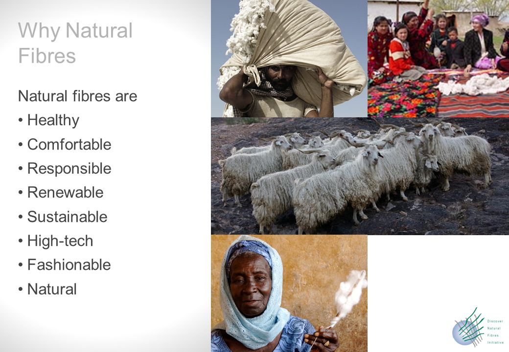 Slide 7 Keep the momentum of 2009 Further develop the initiative Offering a permanent platform for natural fibres Keeping strong relations with FAO, UN and the related networks The Future of DNFI
