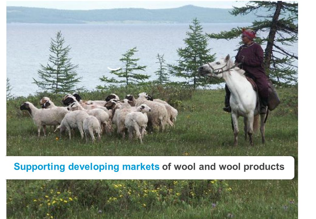 Slide 8 Supporting developing markets of wool and wool products
