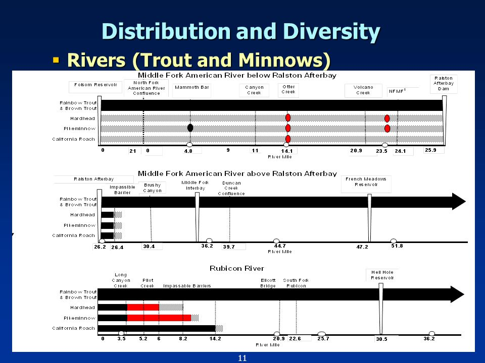 11 Distribution and Diversity  Rivers (Trout and Minnows)