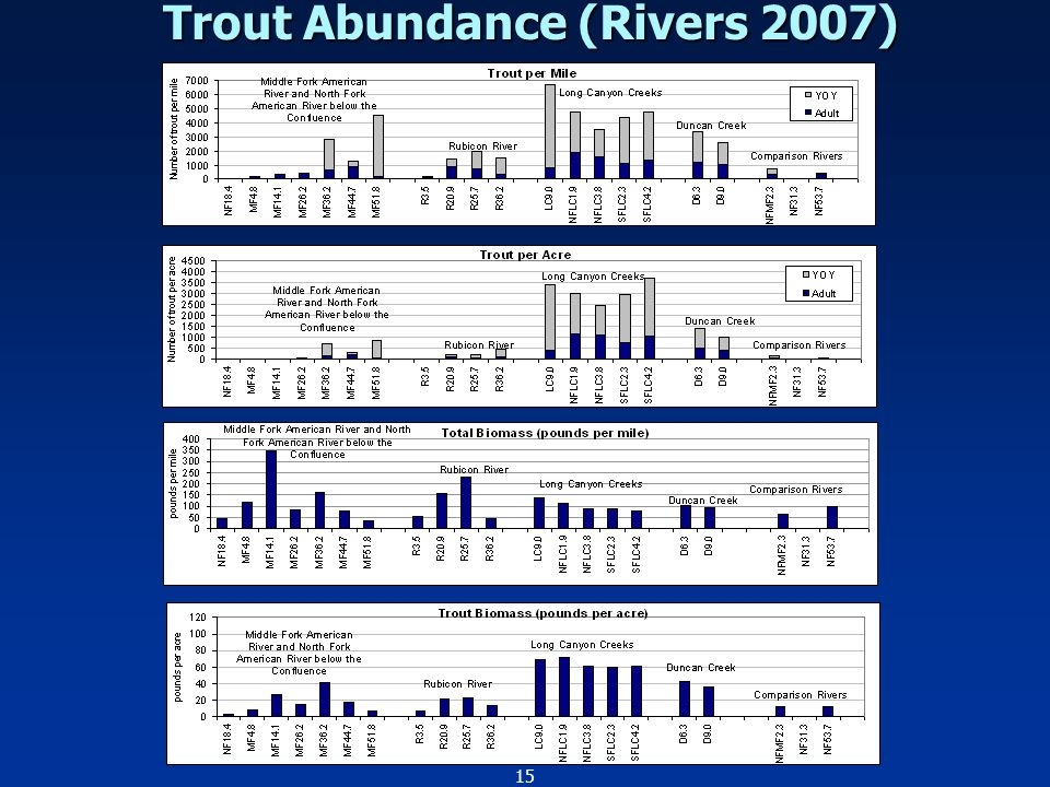 15 Trout Abundance (Rivers 2007)