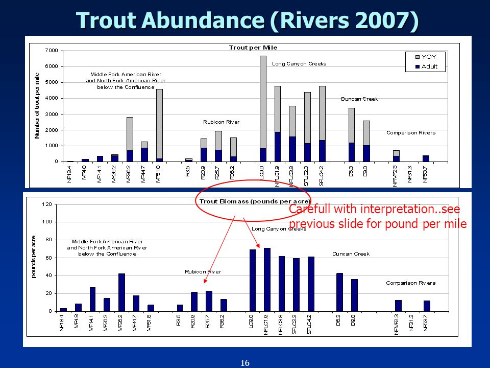 16 Trout Abundance (Rivers 2007) Carefull with interpretation..see previous slide for pound per mile