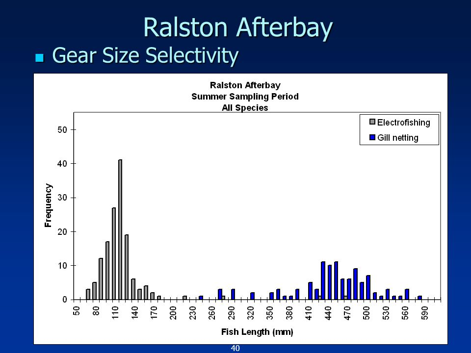 40 Ralston Afterbay Gear Size Selectivity Gear Size Selectivity