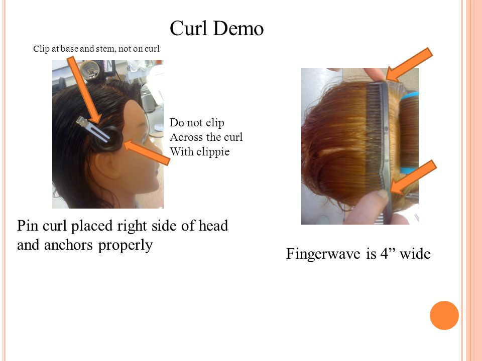 """Curl Demo Pin curl placed right side of head and anchors properly Fingerwave is 4"""" wide Do not clip Across the curl With clippie Clip at base and stem"""