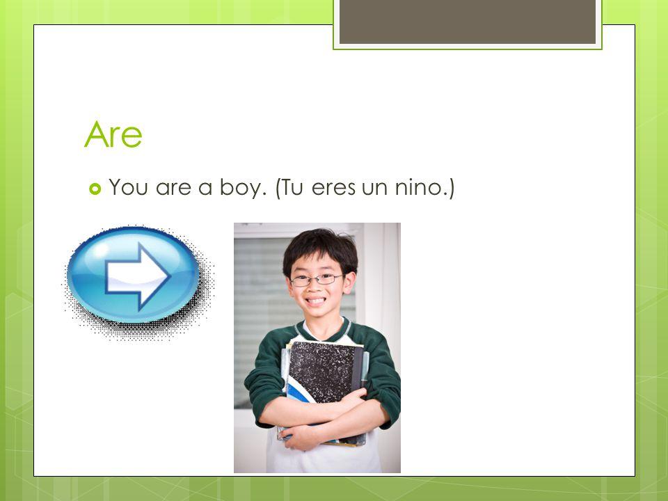 Are  You are a boy. (Tu eres un nino.)