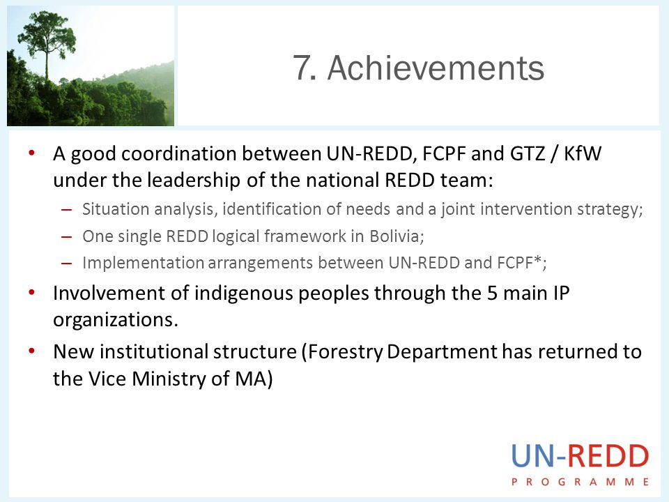A good coordination between UN-REDD, FCPF and GTZ / KfW under the leadership of the national REDD team: – Situation analysis, identification of needs and a joint intervention strategy; – One single REDD logical framework in Bolivia; – Implementation arrangements between UN-REDD and FCPF*; Involvement of indigenous peoples through the 5 main IP organizations.