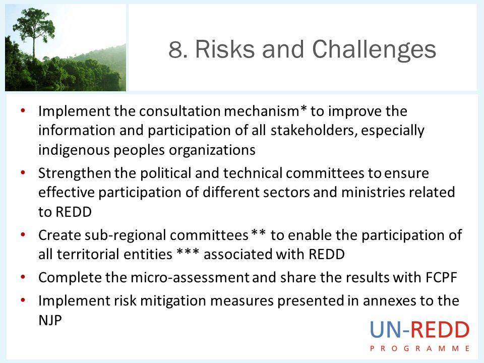 Implement the consultation mechanism* to improve the information and participation of all stakeholders, especially indigenous peoples organizations Strengthen the political and technical committees to ensure effective participation of different sectors and ministries related to REDD Create sub-regional committees ** to enable the participation of all territorial entities *** associated with REDD Complete the micro-assessment and share the results with FCPF Implement risk mitigation measures presented in annexes to the NJP 8.