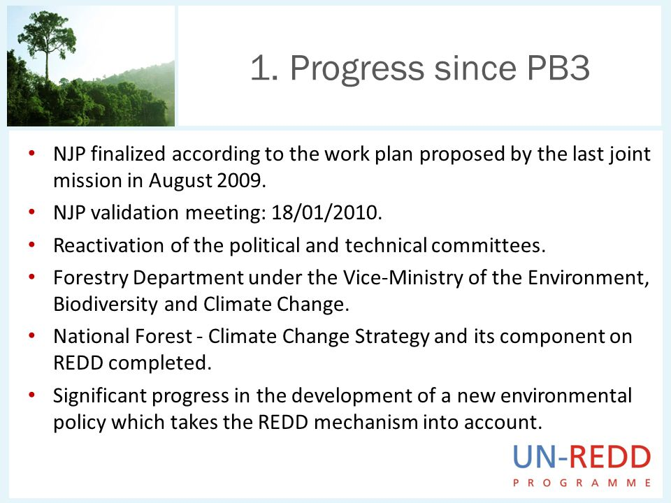 NJP finalized according to the work plan proposed by the last joint mission in August 2009. NJP validation meeting: 18/01/2010. Reactivation of the po