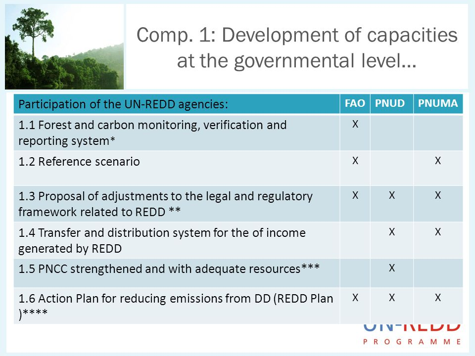Comp. 1: Development of capacities at the governmental level… Participation of the UN-REDD agencies: FAOPNUDPNUMA 1.1 Forest and carbon monitoring, ve