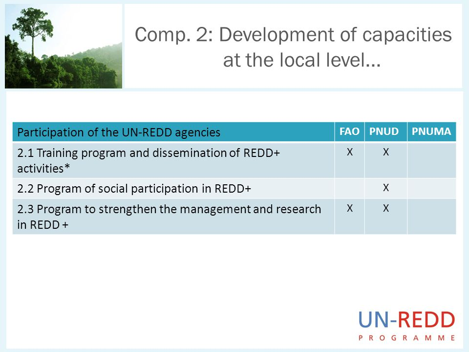 Comp. 2: Development of capacities at the local level... Participation of the UN-REDD agencies FAOPNUDPNUMA 2.1 Training program and dissemination of