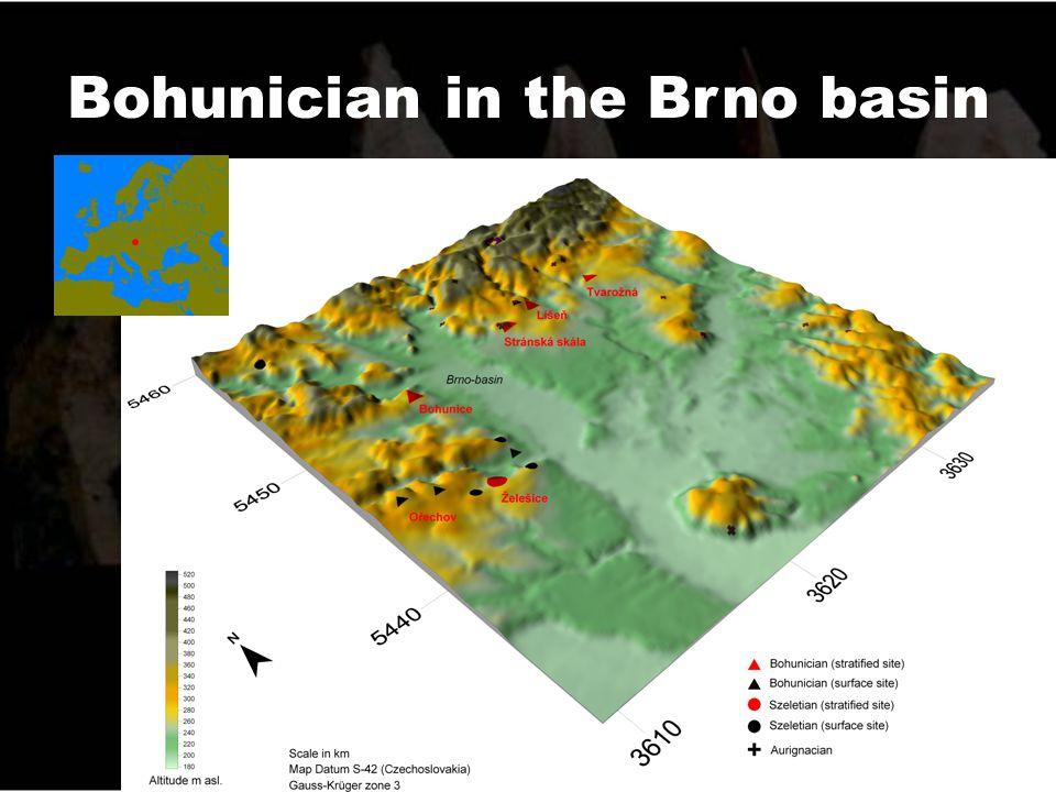 Bohunician in the Brno basin