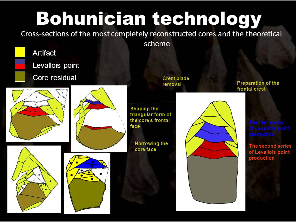 Bohunician technology Cross-sections of the most completely reconstructed cores and the theoretical scheme The first series of Levallois point production The second series of Levallois point production Artifact Core residual Levallois point Crest blade removal Preparation of the frontal crest Shaping the triangular form of the core's frontal face Narrowing the core face