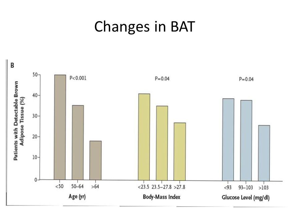 Changes in BAT