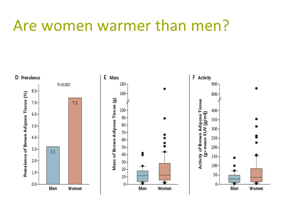 Are women warmer than men