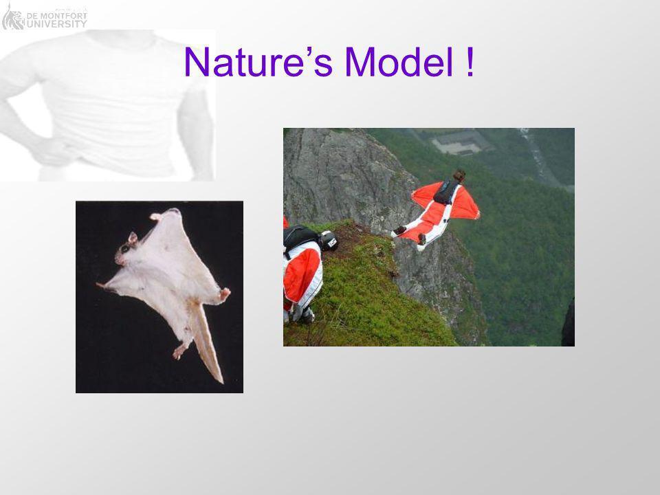 Nature's Model !