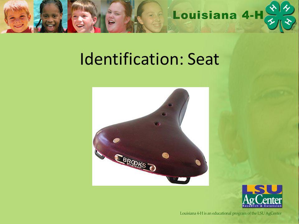 Identification: Seat