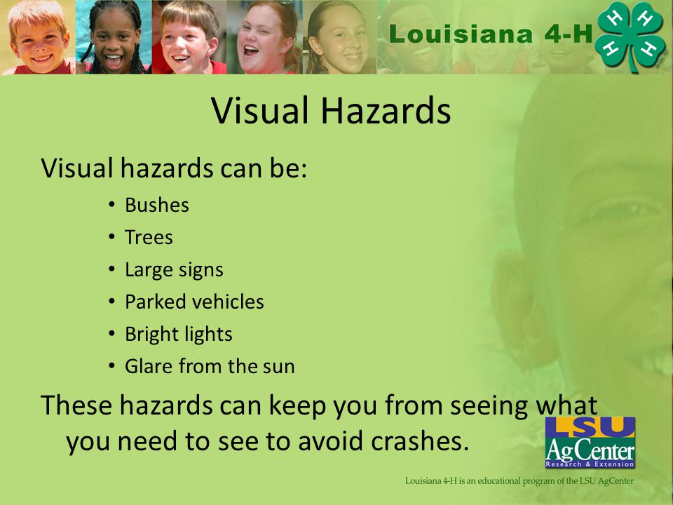 Visual Hazards Visual hazards can be: Bushes Trees Large signs Parked vehicles Bright lights Glare from the sun These hazards can keep you from seeing what you need to see to avoid crashes.