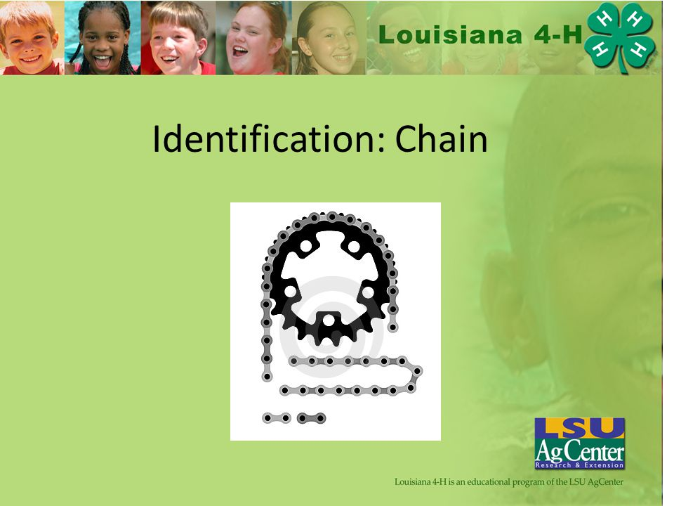 Identification: Chain