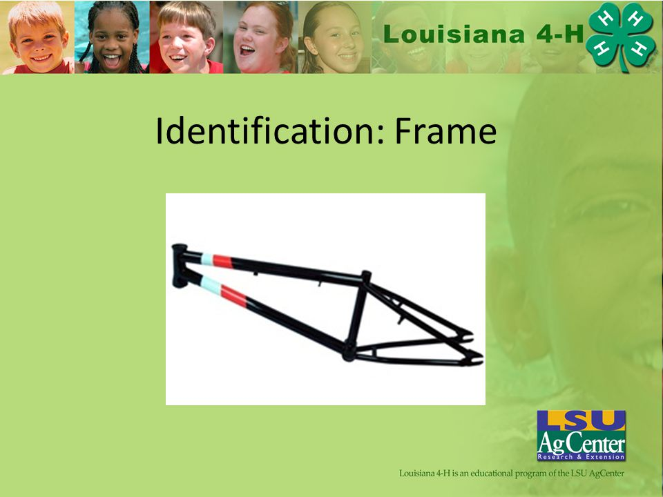 Identification: Frame