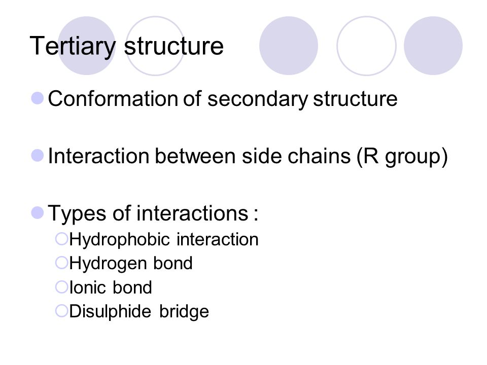 Tertiary structure Conformation of secondary structure Interaction between side chains (R group) Types of interactions :  Hydrophobic interaction  H