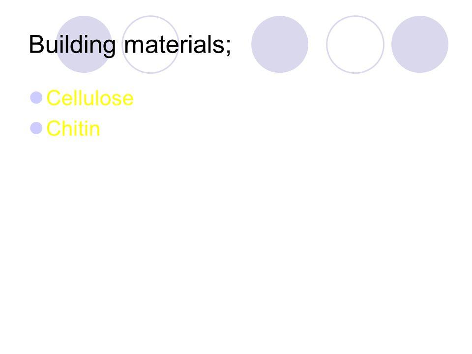 Building materials; Cellulose Chitin