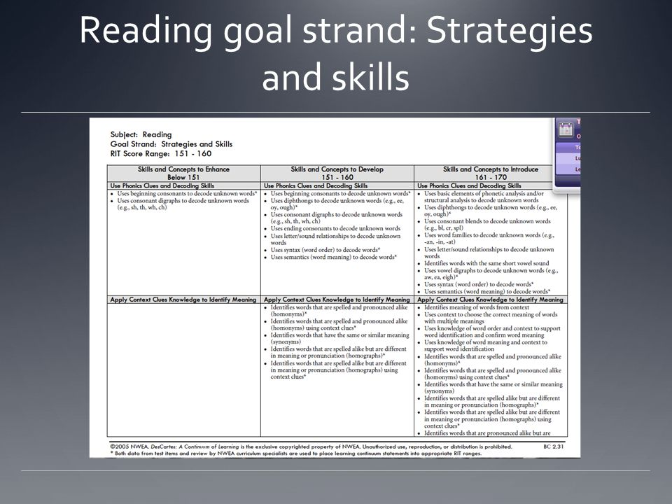 Reading goal strand: Strategies and skills