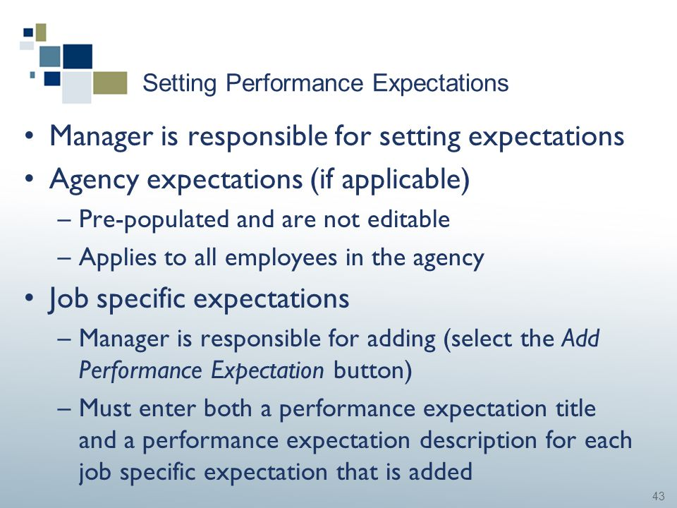 43 Setting Performance Expectations Manager is responsible for setting expectations Agency expectations (if applicable) –Pre-populated and are not edi
