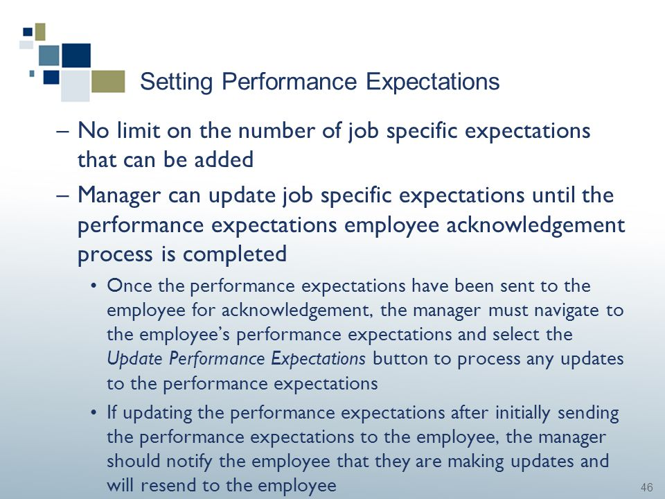 46 Setting Performance Expectations –No limit on the number of job specific expectations that can be added –Manager can update job specific expectatio
