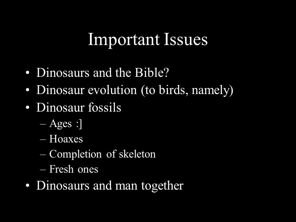 Important Issues Dinosaurs and the Bible.