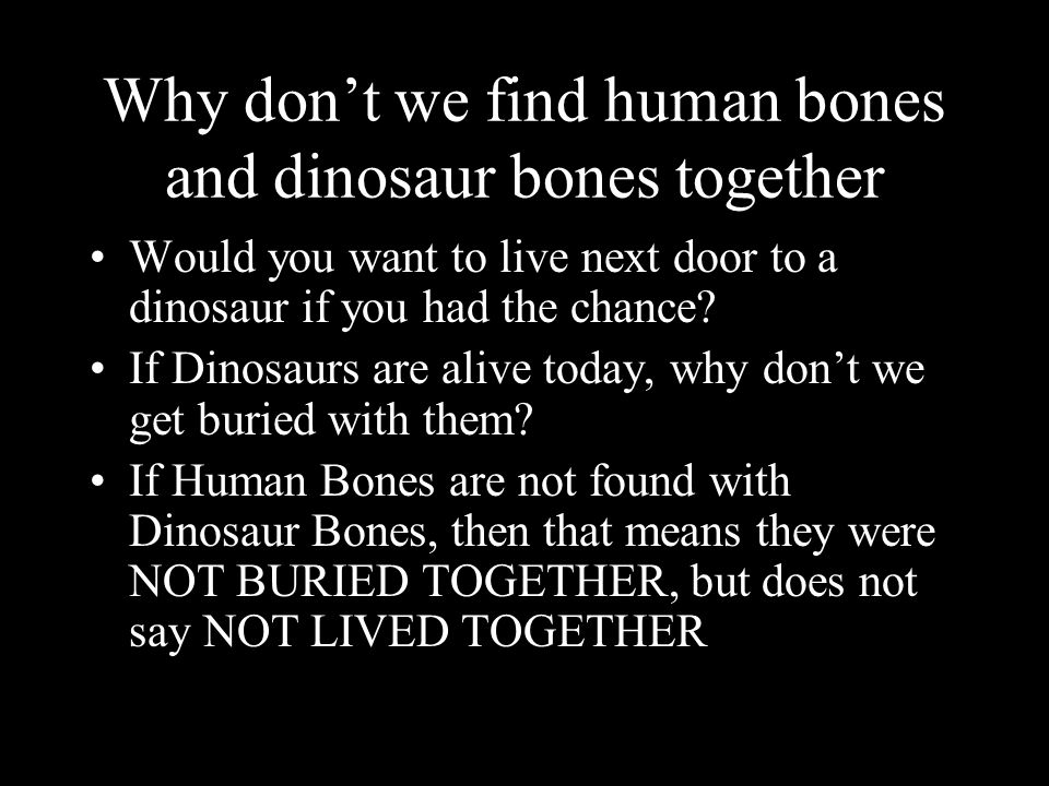 Why don't we find human bones and dinosaur bones together Would you want to live next door to a dinosaur if you had the chance.