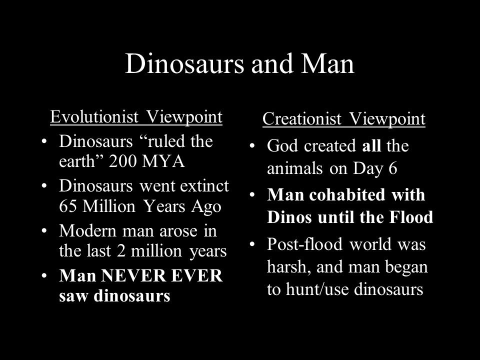 Dinosaurs and Man Evolutionist Viewpoint Dinosaurs ruled the earth 200 MYA Dinosaurs went extinct 65 Million Years Ago Modern man arose in the last 2 million years Man NEVER EVER saw dinosaurs Creationist Viewpoint God created all the animals on Day 6 Man cohabited with Dinos until the Flood Post-flood world was harsh, and man began to hunt/use dinosaurs
