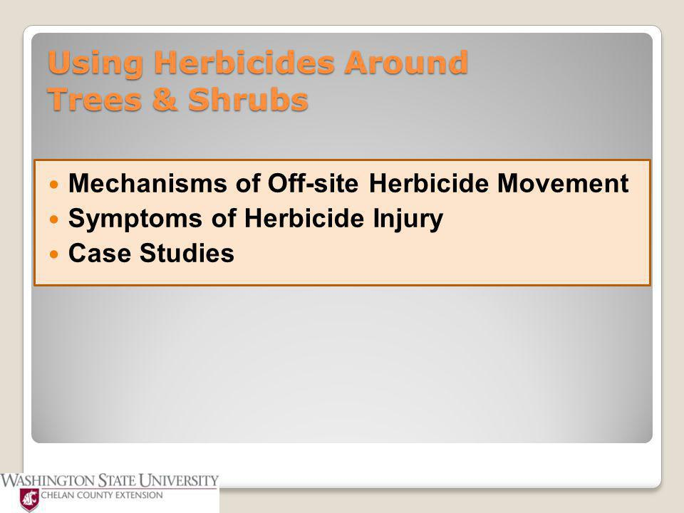 Using Herbicides Around Trees & Shrubs Plant injury is usually caused by not following label directions.