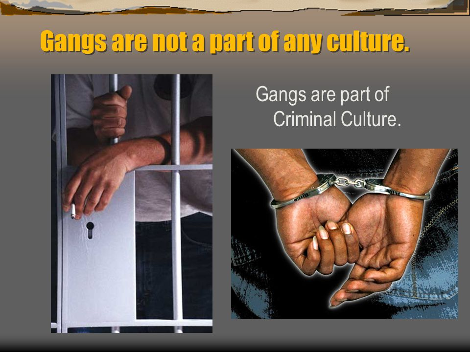 Gangs are not a part of any culture. Gangs are part of Criminal Culture.