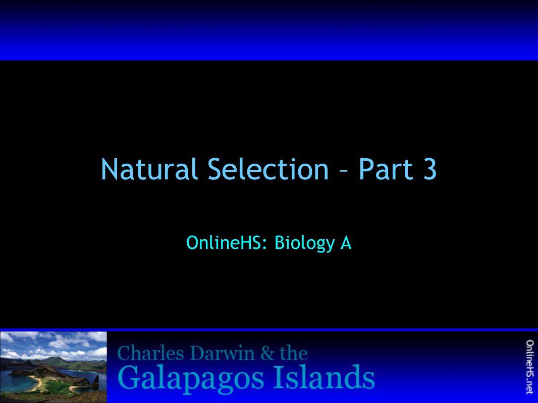 Natural Selection – Part 3 OnlineHS: Biology A