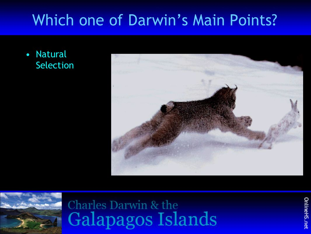 Which one of Darwin's Main Points? Natural Selection