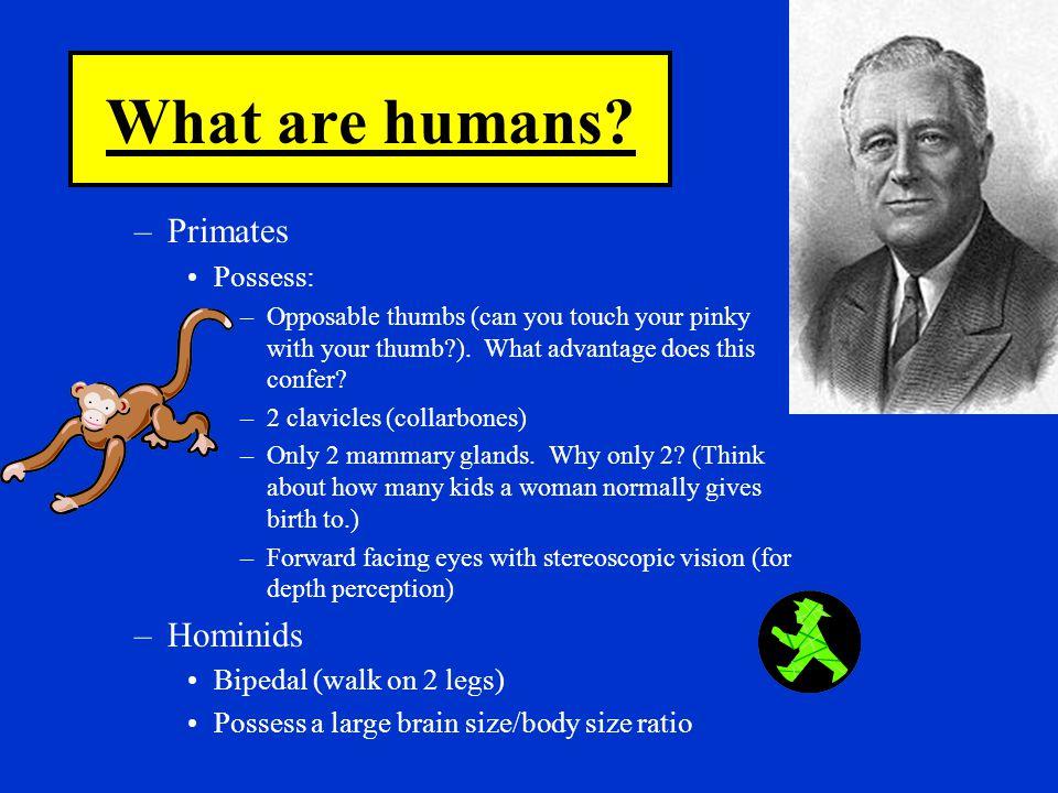 Homeostasis is DYNAMIC.