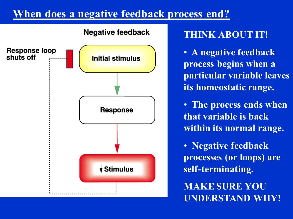When does a negative feedback process end? THINK ABOUT IT! A negative feedback process begins when a particular variable leaves its homeostatic range.