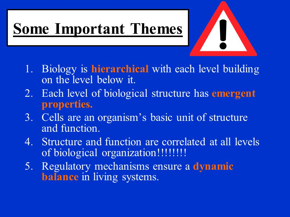 Some Important Themes 1.Biology is hierarchical with each level building on the level below it. 2.Each level of biological structure has emergent prop