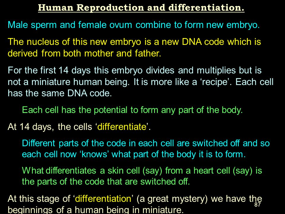 86 Embryonic Stem Cell Research. Abortion is not used to obtain these embryos. Only 'no-use' In Vitro Fertilisation (IVF) embryos are used for researc